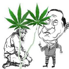 berantas narkoba
