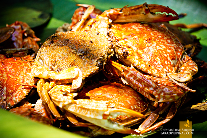 Once Islas Sirumon Island Zamboanga City