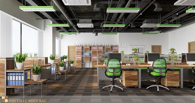 Thiết kế phòng làm việc chuyên nghiệp  mang đến cho không gian sự sinh động và cuốn hút nhất
