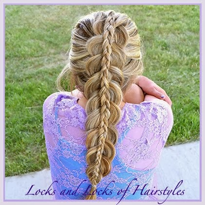 Piggyback Braid