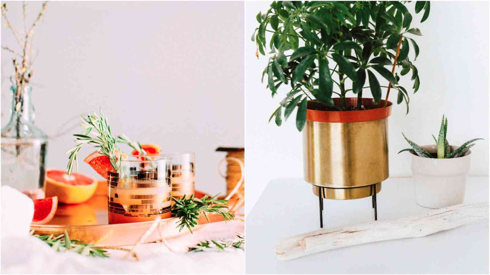 gold plant pot and glasses