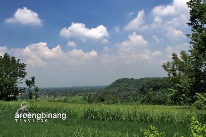 candi barong sleman yogyakarta panorama sawah