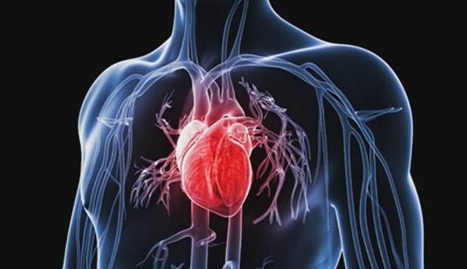 5 Cara Mencegah Serangan Jantung
