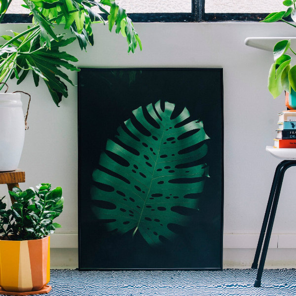 monstera leaf print of an original paper sculpture