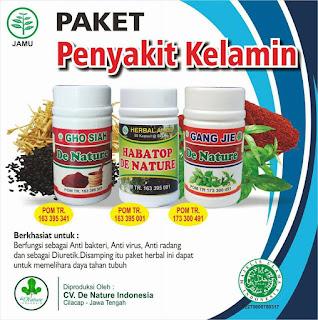 obat herbal untuk Alat Reproduksi Pria Yang Bernanah