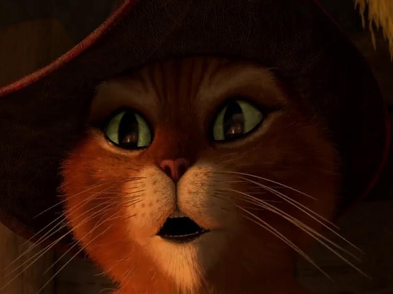 Прикольные картинки с котом из шрека
