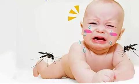Những suy nghĩ sai lầm về căn bệnh sốt xuất huyết-https://songvuikhoemoingay24h