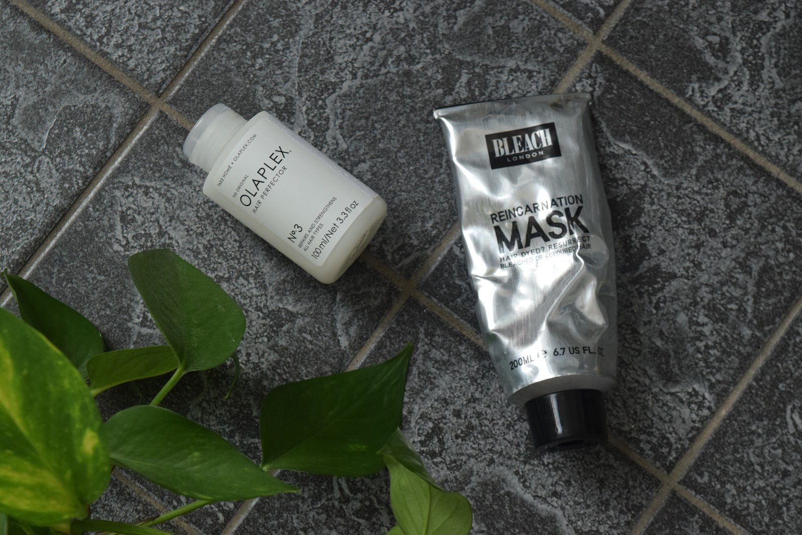 Olaplex no 3, Bleach Reincarnation mask and pothos leaves flatlay