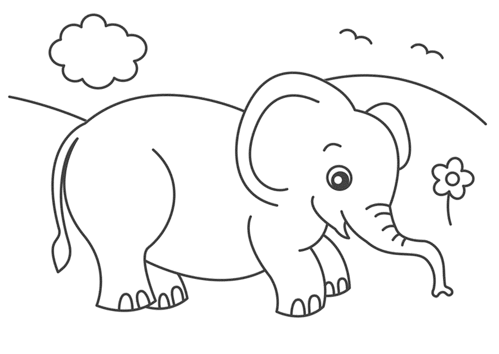 indian elephant coloring pages - Coloring Pages Indian Elephants