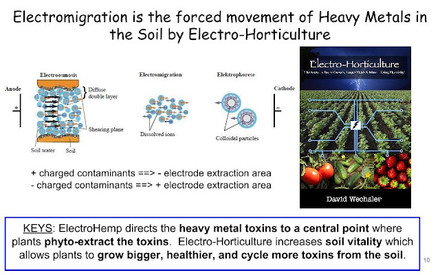Electrokinetics aka Electro-Horticulture directs the heavy metal toxins to a central point where plants phytoextract the toxins.