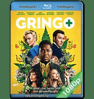 GRINGO: SE BUSCA VIVO O MUERTO (2018) 1080P HD MKV ESPAÑOL LATINO