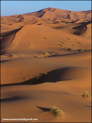 Dunes de Merzouga - Erg Chebbi