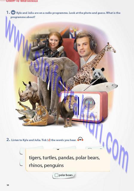 7. Sınıf Pantera Yayınları İngilizce Ders Kitabı Cevapları Sayfa 38