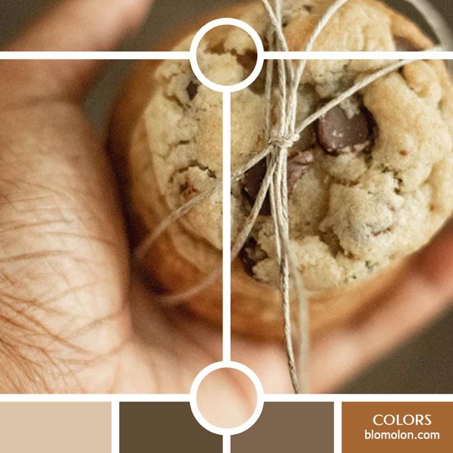 variedad_en_color_color_43