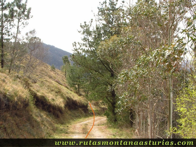Camino a Caborcos por la izquierda