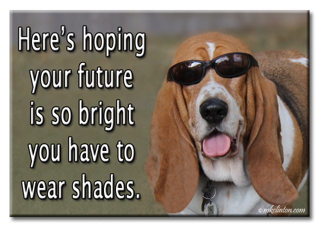 "Bentley Basset Hound meme "" Here's hoping your future is so bright you have to wear shades."""