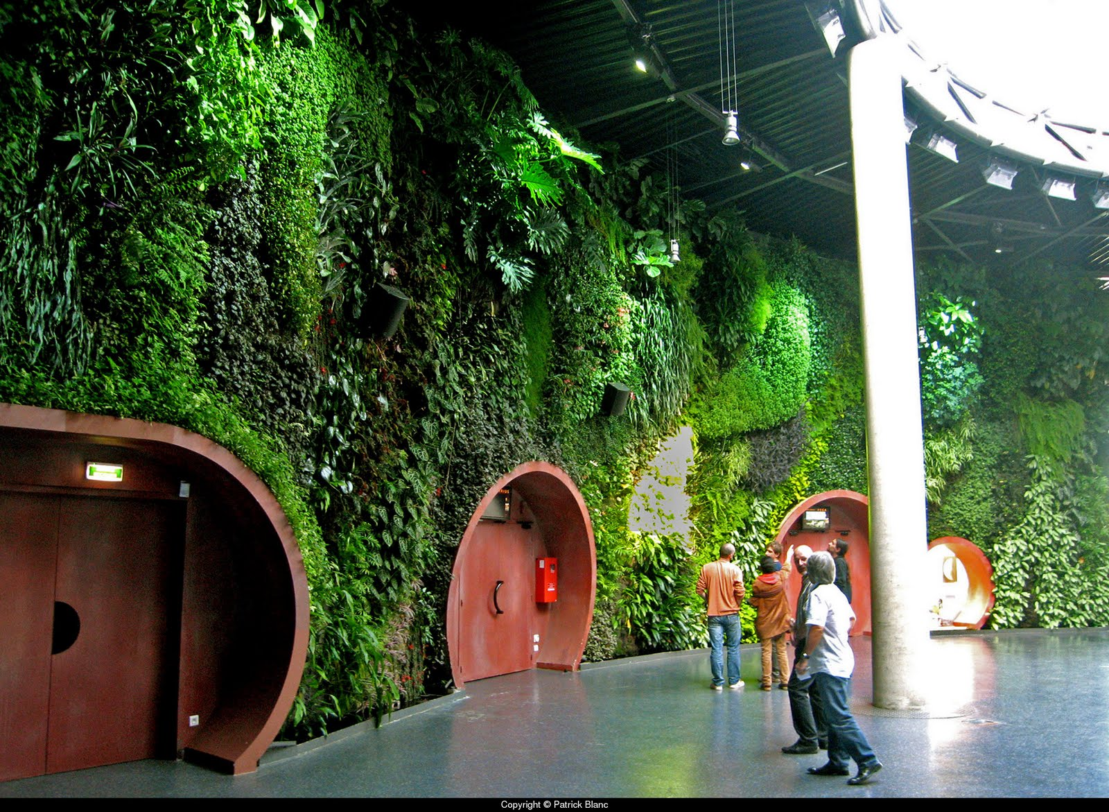 Vertikal Gardinen Growing Walls And Vertical Gardens The Work Of Patrick