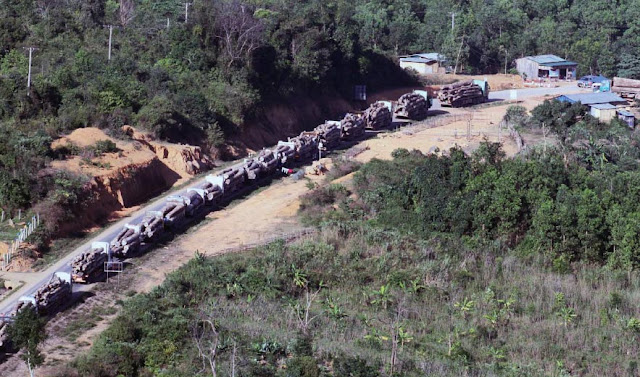 Convoy of log trucks
