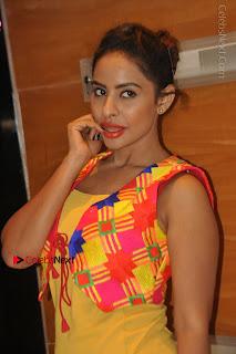 Telugu Actress Model Sri Reddy Latest Stills in Yellow Dress  0011.JPG