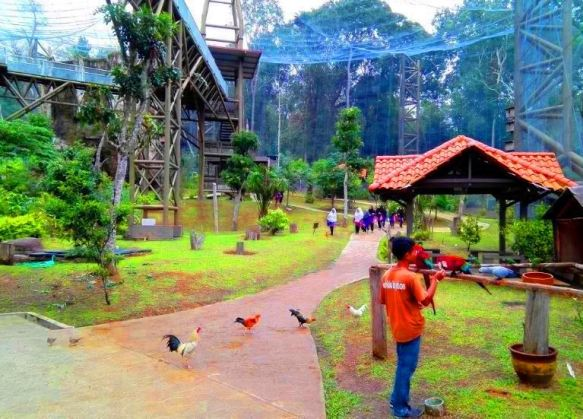 taman burung melaka anak anak