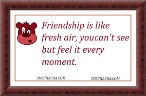 friendship is like fresh air, you can't see, but, feel it every moment,