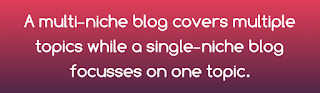 A single niche and a multi niche blog