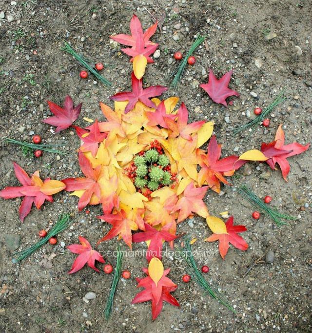 foglie bacche d'autunno