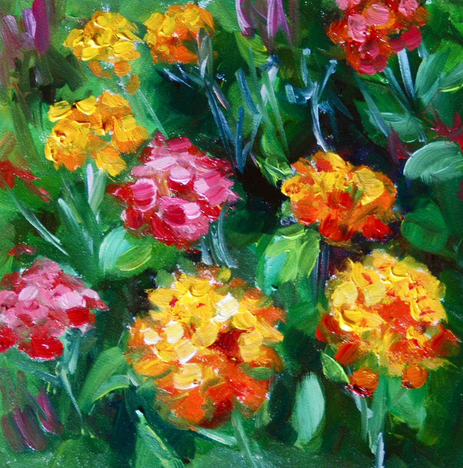 rose bloom gwen mike 2