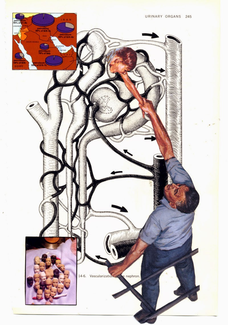 Collage from old anatomy book