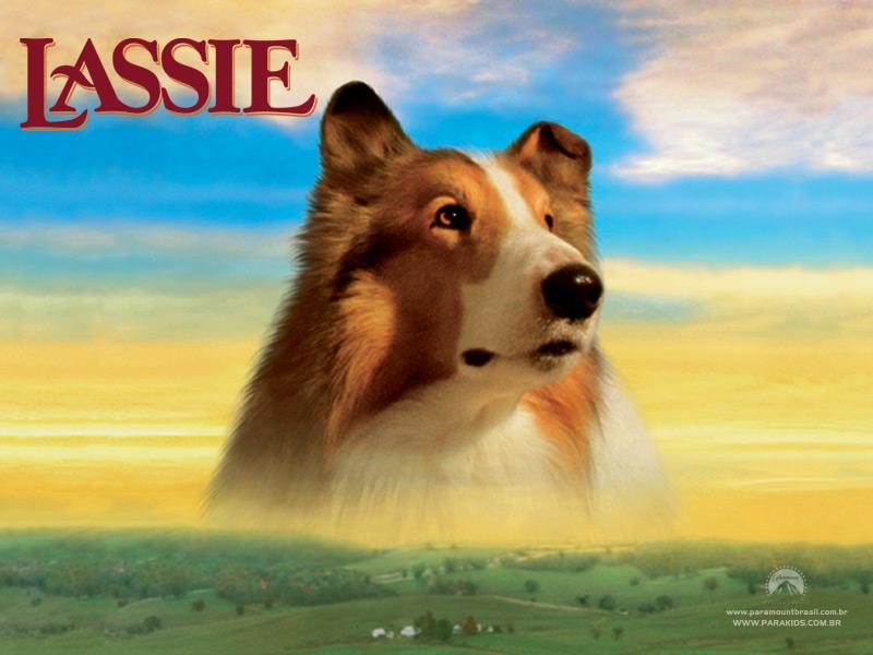 Lassie Der Film