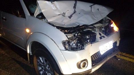 Jussiape: Carro fica parcialmente destruído após atropelar Vaca Preta na BA-148