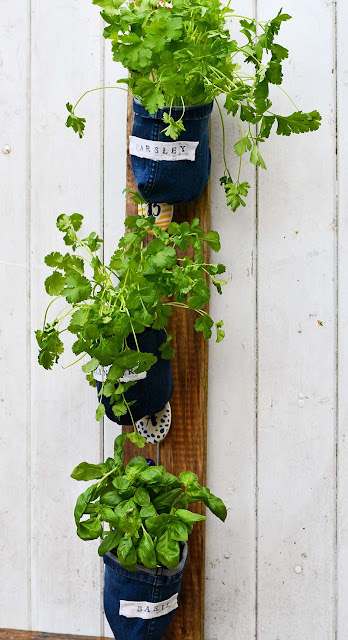 Indoor Herb Garden Planters by Pillar Box Blue
