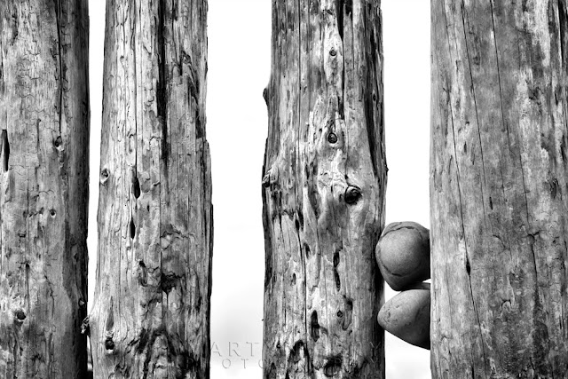 Simple black and white image of stones wedged between posts on Bossington Beach by Martyn Ferry Photography