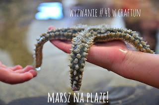 http://craftfunsklep.blogspot.com/2016/06/wyzwanie-48-marsz-na-plaze.html