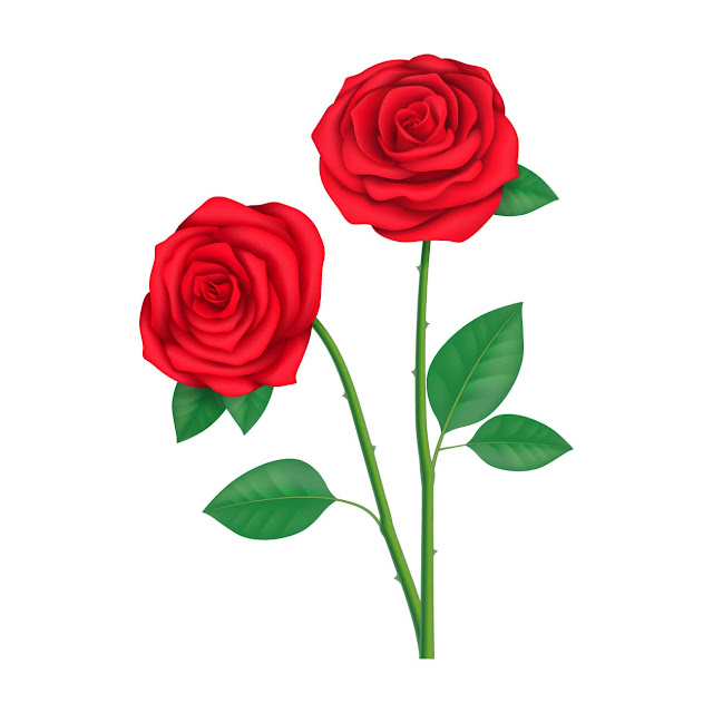 Rose Day Wallpapers Download