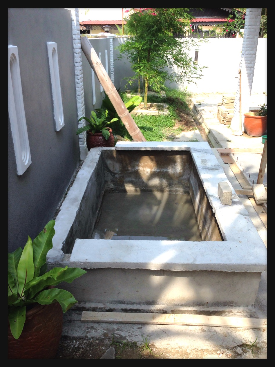 Japanese koi pond do it yourself diy for Do it yourself fish pond
