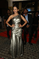 Rakul Preet Singh in Shining Glittering Golden Half Shoulder Gown at 64th Jio Filmfare Awards South ~  Exclusive 041.JPG