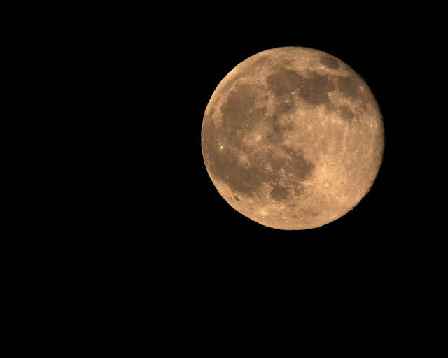 600mm DSLR Image taken one day after full strawberry moon (Source: Palmia Observatory)