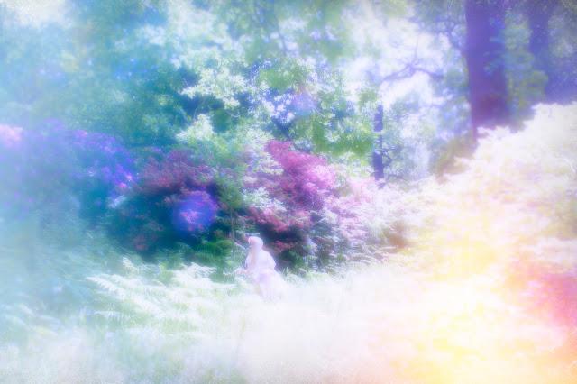 faerie summer