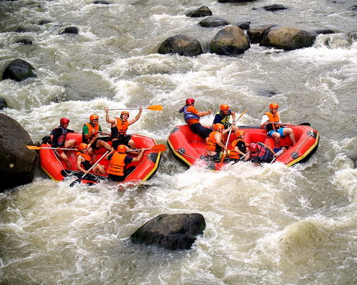 Travel.Tinuku.com Nimanga river rafting in Minahasa has ripple grades 3-6 if lucky watch Tarsius tarsier and Macaca nigra