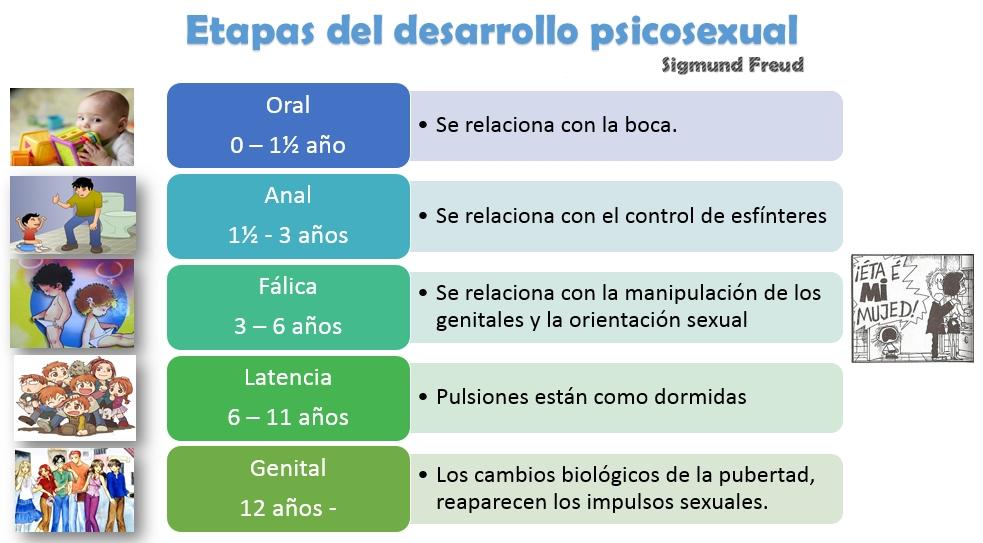 Teoria Psicosexual Freud 103