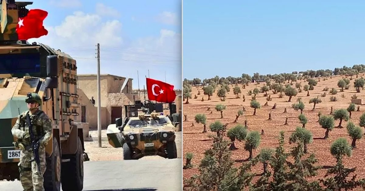 Turkey Cuts Off Water Supply To Kurds In Northern Syria And Destroys Half-A-Million Olive Trees