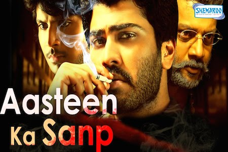 Aasteen Ka Sanp 2010 Hindi Dubbed Movie Download