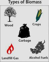 types of biomass