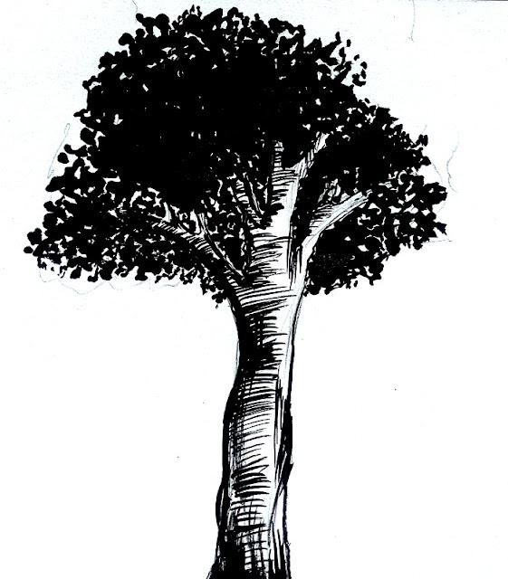 Cara Menggambar Pohon untuk Pemula dan Psikotes
