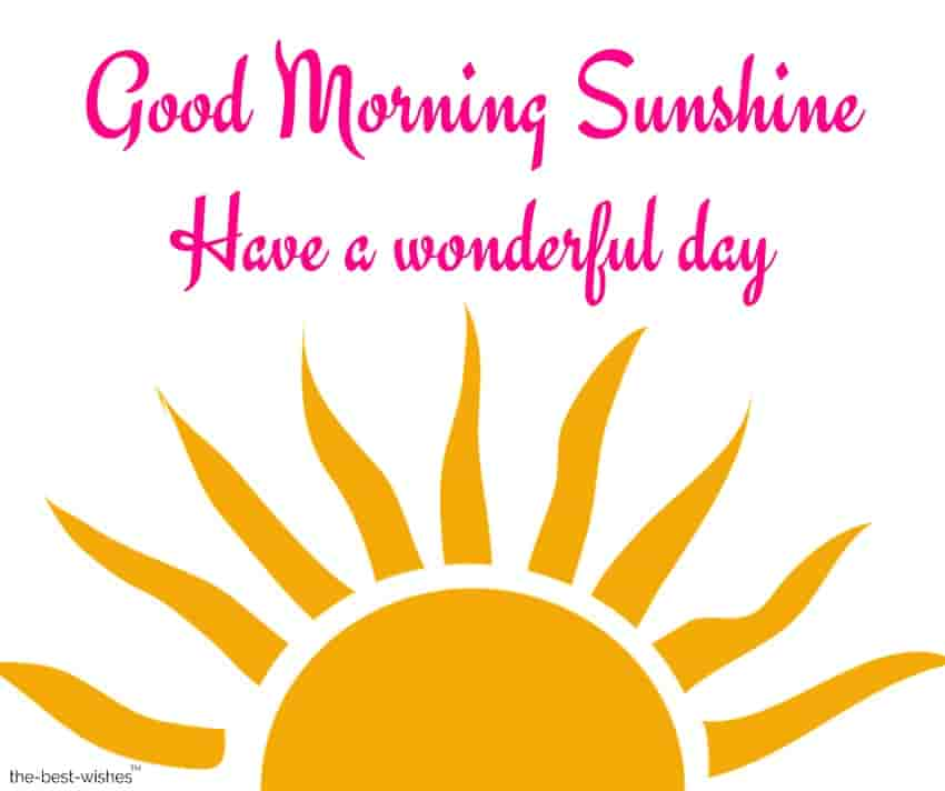 good morning sunshine have a wonderful day