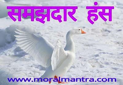 motivational moral sroty for children in hindi samajhdar hans , www.moralmantraa.com