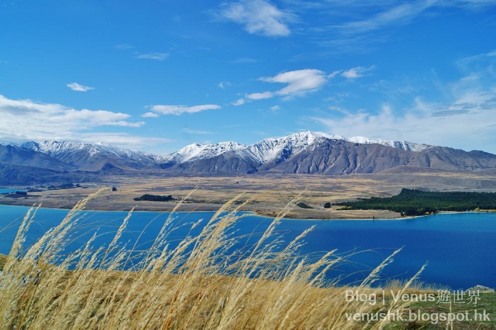 新西蘭南島