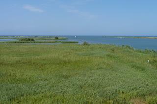 Mirador del Delta del Ebro.