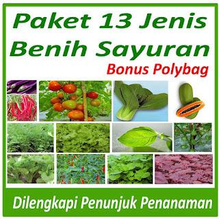 paket-benih-tanaman-murah.jpg